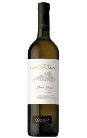 This is an image of Concilio Pinot Grigio