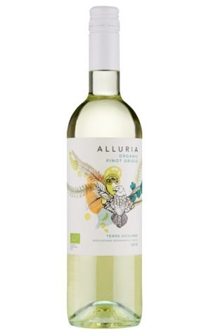 A product image for Alluria Organic Pinot Grigio